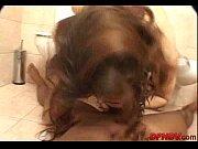 Sexe zoophilie vidéos de sexe cougar