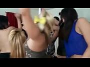 петербургские ночи 1 порно скачать с торрента