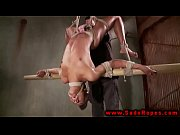 Tied up and suspended bdsm whore in their session