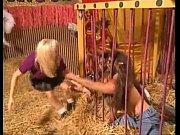 evil circus music video