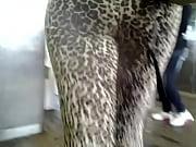 candid booty leopard leggings
