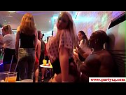 seductive real party babes get drilled