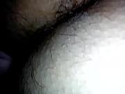 La peluda ebria