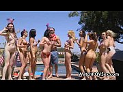 Sexy bikini BBQ party by pool