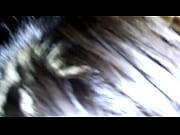 Salope gros nichons fille 18 ans salope