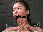 asian bdsm of slave tigerr benson in oriental.