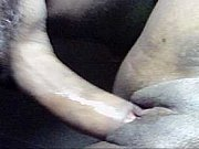 Krabi escorts homosexuell par söker kvinna