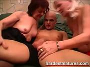 секретарши секси картинки