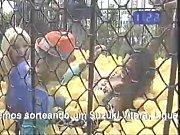 Perdidos na tarde - Tigresas na jaula