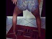 &eacute_ festa da &aacute_rvore t&aacute_