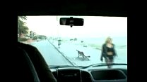 Putas de carretera - Street Sluts
