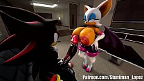 Rouge And Shadow (Commission: jimmythereptile) preview image