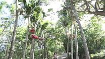 tropical island japanese