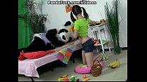 Attractive brunette girl seducing Panda bear