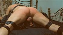 SP328 short Thumbnail