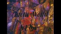 LBO - The Erotic World Of Seka - Full movie