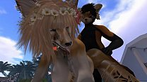 Exotic Dancer ( Furry / Yiff ) Thumbnail