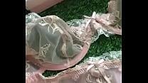 bra panty