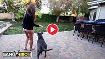 BANGBROS - Moe Johnson Buries His Anaconda In PAWG Maddy O'Reillys Ass Hole Thumbnail