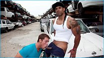 GAYWIRE - The Harder A Thug Looks, The Harder H... Thumbnail