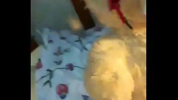 Teddy bear feti sh
