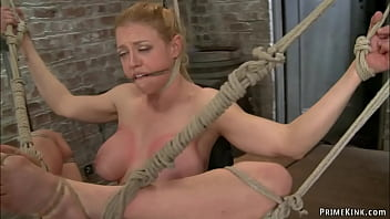 Busty hogtied blonde extreme whipped