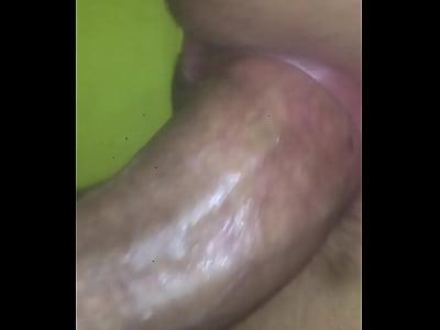 perra disfrutando de verga bien mojada