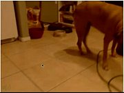 My kiwi mom playing with my friend - cam19.org