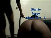 thot bbw dog