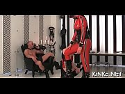 Erected stud-horse goes in