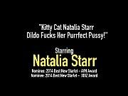 thumb Kitty Cat Na talia Starr Dildo Fucks Her Purrfect Pussy