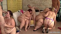 Fat and horny BBWs Amazon Darjeeling, Apple Bomb, Lady Lynn and Sweet Cheeks har