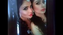 Tribute for my sexy nagins(Ada khan&mouni roy) tumblr xxx video