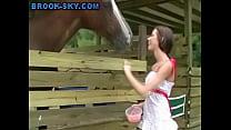 Teen Farm Strip image