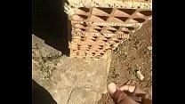 Comendo tijolo