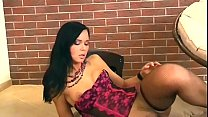 Brunette masturbates in panties and fishnet nylons Preview