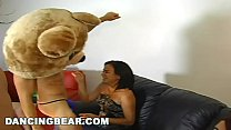 donk party & stripper house call featuring the dancingbear (db4713) thumbnail