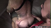 Grey wolf getting assfucked on all fours