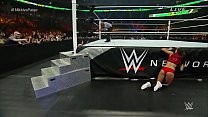 Nikki Bella vs  Paige Money in the Bank 2015  the Bank 2015