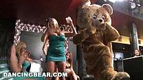 DANCING BEAR - Let Me Tell You About A Crazy Party Full Of Chicks Suckin' Dicks Vorschaubild