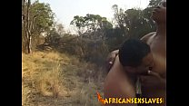 Busty babe gets pounded outdoors