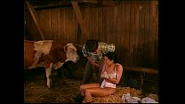 Spermageile-Kuh-Fotzen.-Porno,-DE-(UPLOAD-PornoLand) Vorschaubild