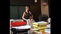 Stagiaire, secretaire, patronne et client - lerenard thumbnail