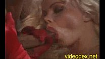 Christian Lavil - La Mante Religieuse (1997) (Karen Lancaume)-2 thumbnail