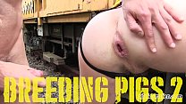 PIGBOY PRESENTS BREEDING PIGS 1-3