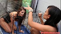 Caged lesbian pet toyed with machine dildo