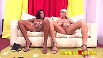Hardcore Latina Shemale On Hot Blonde Tranny An
