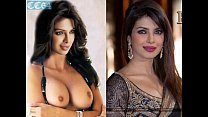 19806 Priyanka Chopra - photo compilation of fake nude pictures preview