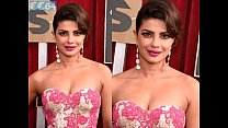 Priyanka Chopra - photo compilation of fake nude pictures preview image