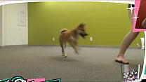 Braless Twitch Streamer Plays With Doggo صورة